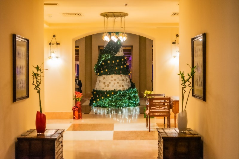 The Christmas tree at Steigenberger Golf Resort in El Gouna for New Year celebration